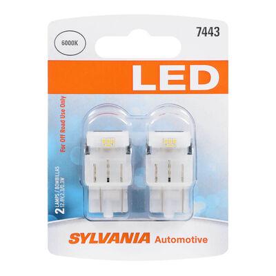 SYLVANIA 7443 WHITE SYL LED Mini Bulb, 2 Pack